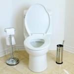 Уборка в ванной: 10 день ввода в систему Флайледи от semyablog.ru
