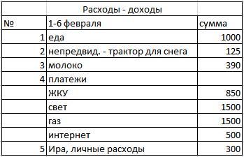 таблица для семейного бюджета